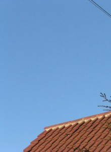 Windkat im Einsatz 8